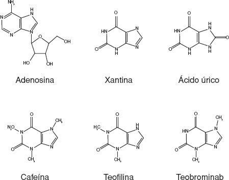frutas con alto contenido de acido urico como eliminar los tofos producidos por el acido urico tanto cae la gota sobre la piedra