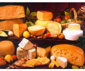 Cuajo transg nico una historia del queso y del cuajo for Guisos franceses